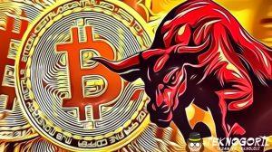 bitcoin-hangi-seviyeleri-gorebilir-
