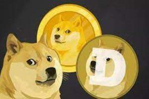doge-coin-yavru-dogurdu1